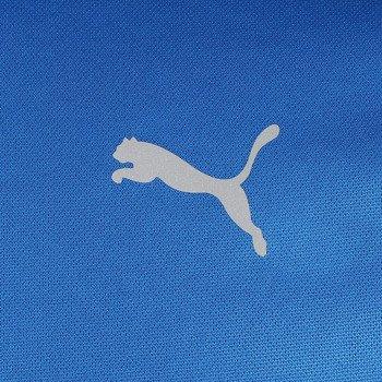 koszulka do biegania męska PUMA ESSENTIALS RUNNING SHORT SLEEVE TEE / 509853-14